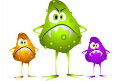 Бактерии и вирусы - причина выделений
